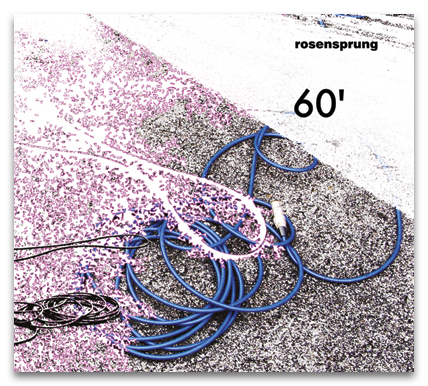 rosensprung_60_cd_cover_schad.jpg